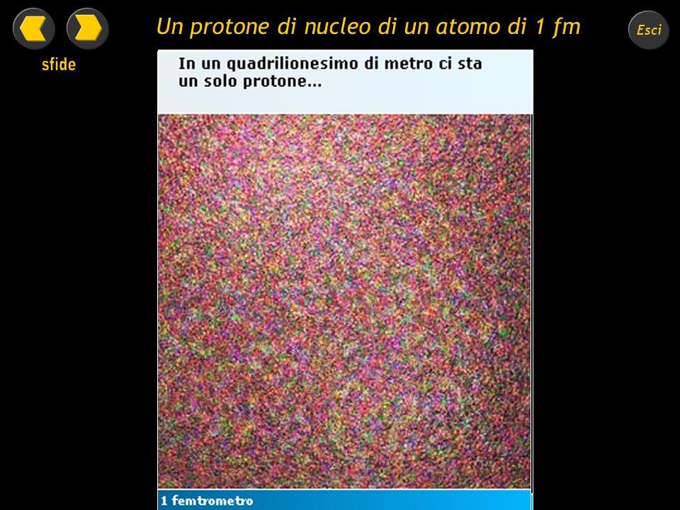 Un protone di nucleo di un atomo di 1 fm