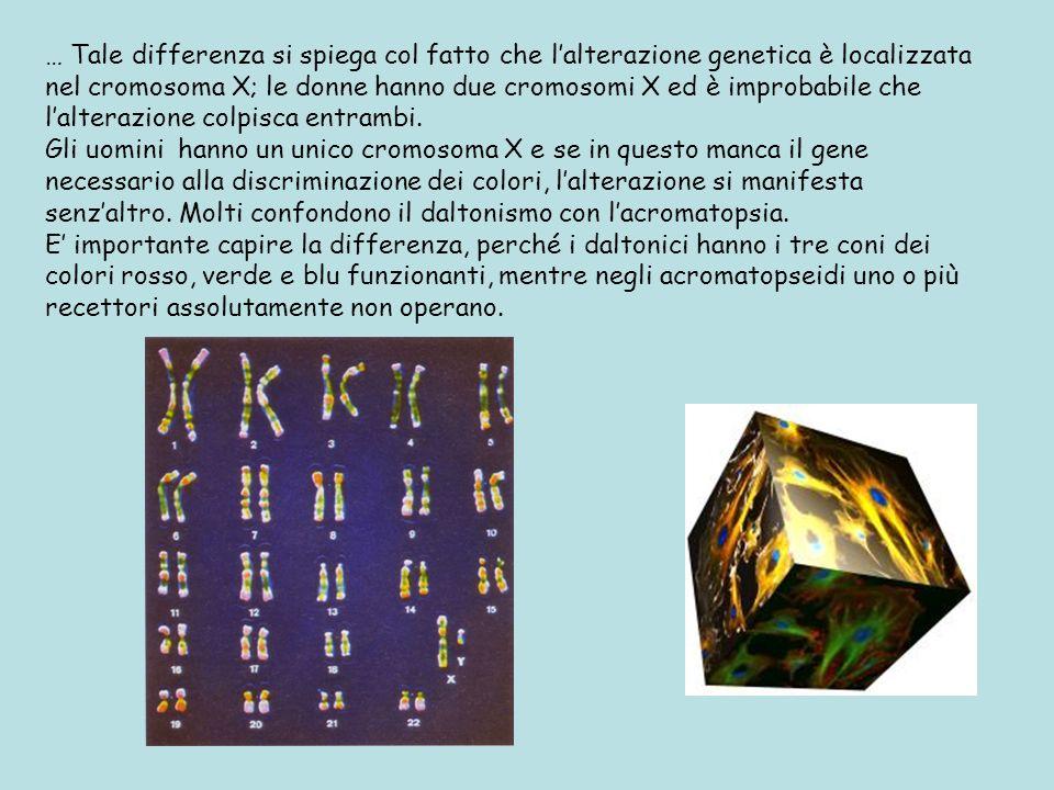 … Tale differenza si spiega col fatto che l'alterazione genetica è localizzata nel cromosoma X; le donne hanno due cromosomi X ed è improbabile che l'alterazione colpisca entrambi.