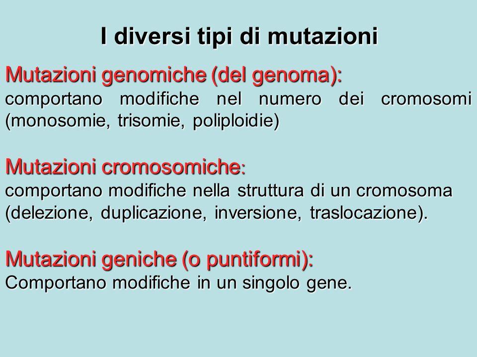 I diversi tipi di mutazioni
