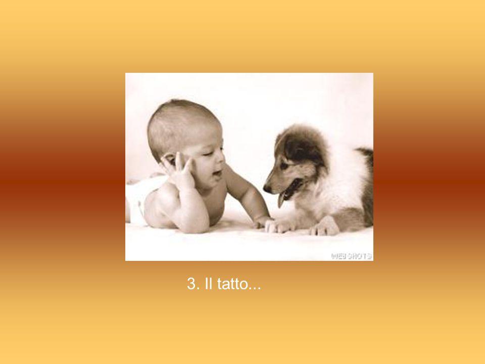 3. Il tatto...