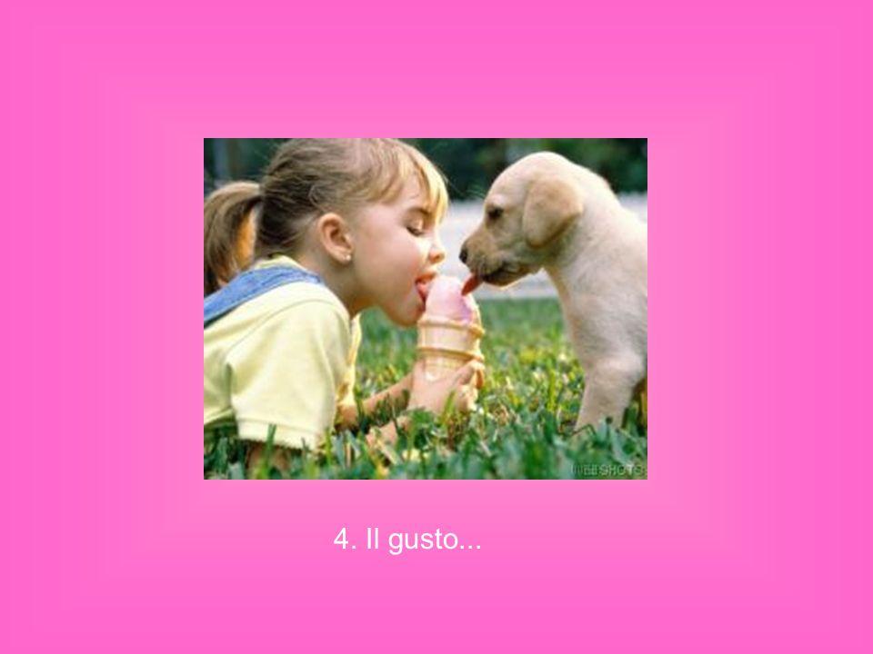 4. Il gusto...