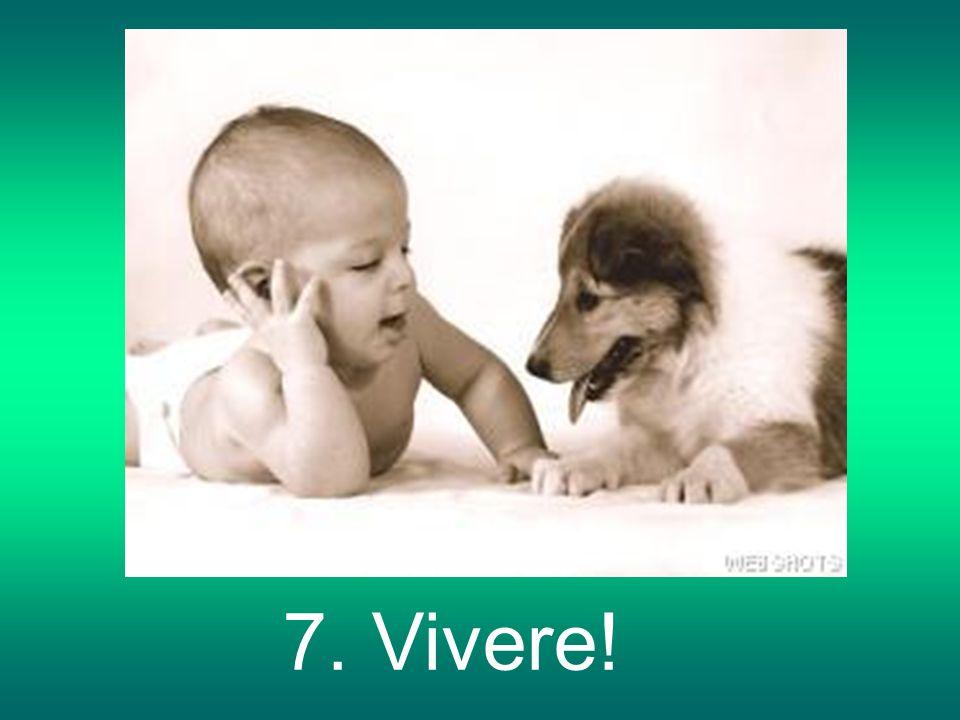 7. Vivere!