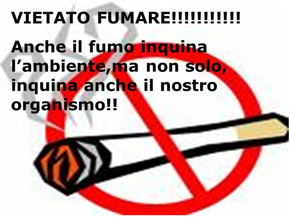 VIETATO FUMARE!!!!!!!!!!.