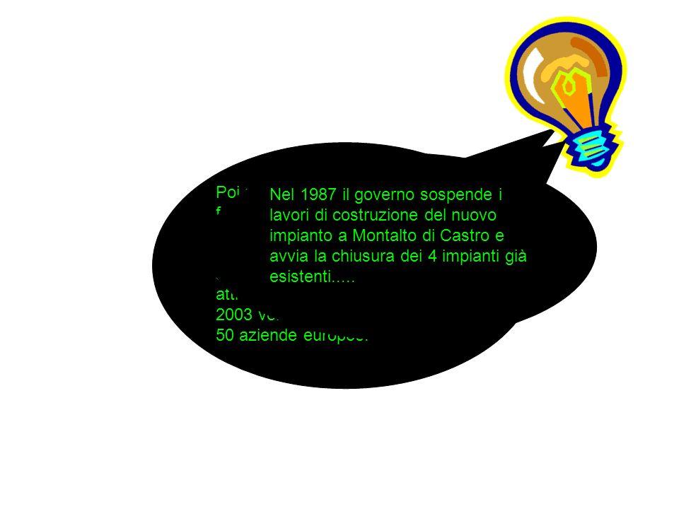 Poi nell' anno 1999, che è stato fondamentale nella storia dell' Enel, il decreto Bersani ha stabilito la liberalizzazione con la separazione societaria delle attività di produzione che, nel 2003 venne ammessa nelle prime 50 aziende europee.