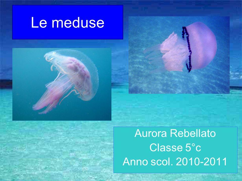 Aurora Rebellato Classe 5°c Anno scol. 2010-2011