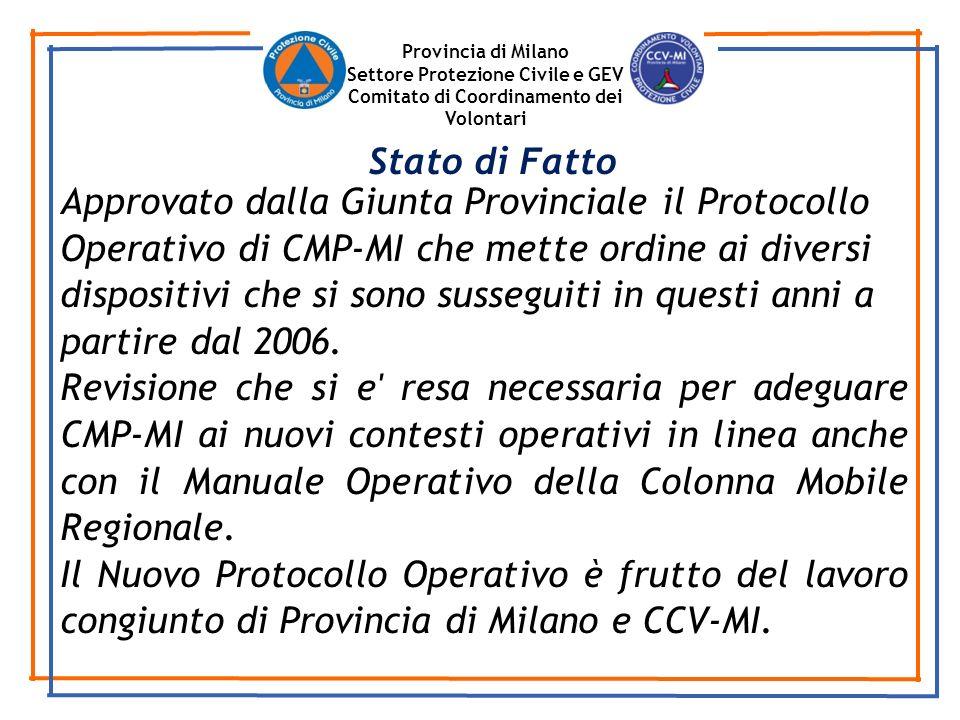 Provincia di Milano Settore Protezione Civile e GEV. Comitato di Coordinamento dei Volontari. Stato di Fatto.