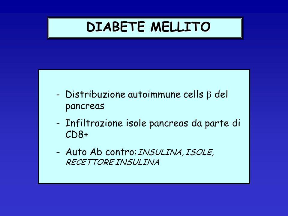 DIABETE MELLITO Distribuzione autoimmune cells  del pancreas