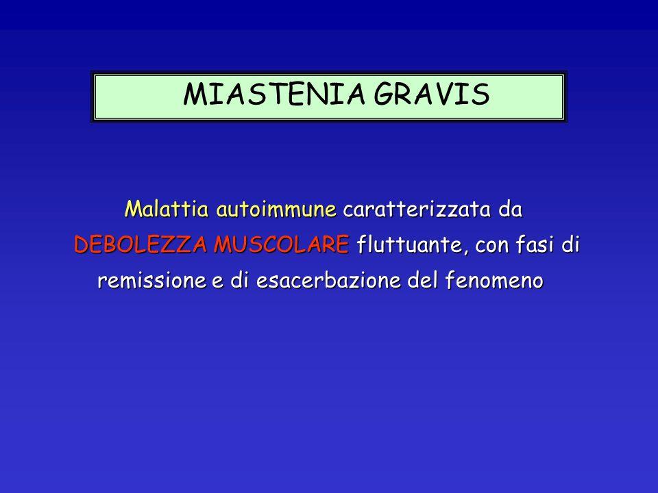 MIASTENIA GRAVIS Malattia autoimmune caratterizzata da