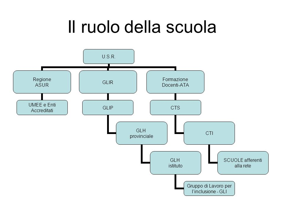 Il ruolo della scuola