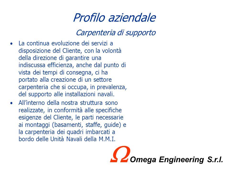 Profilo aziendale Carpenteria di supporto