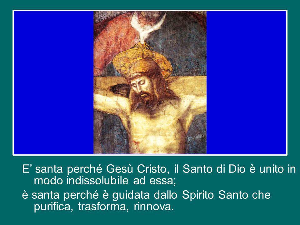 E' santa perché Gesù Cristo, il Santo di Dio è unito in modo indissolubile ad essa; è santa perché è guidata dallo Spirito Santo che purifica, trasforma, rinnova.