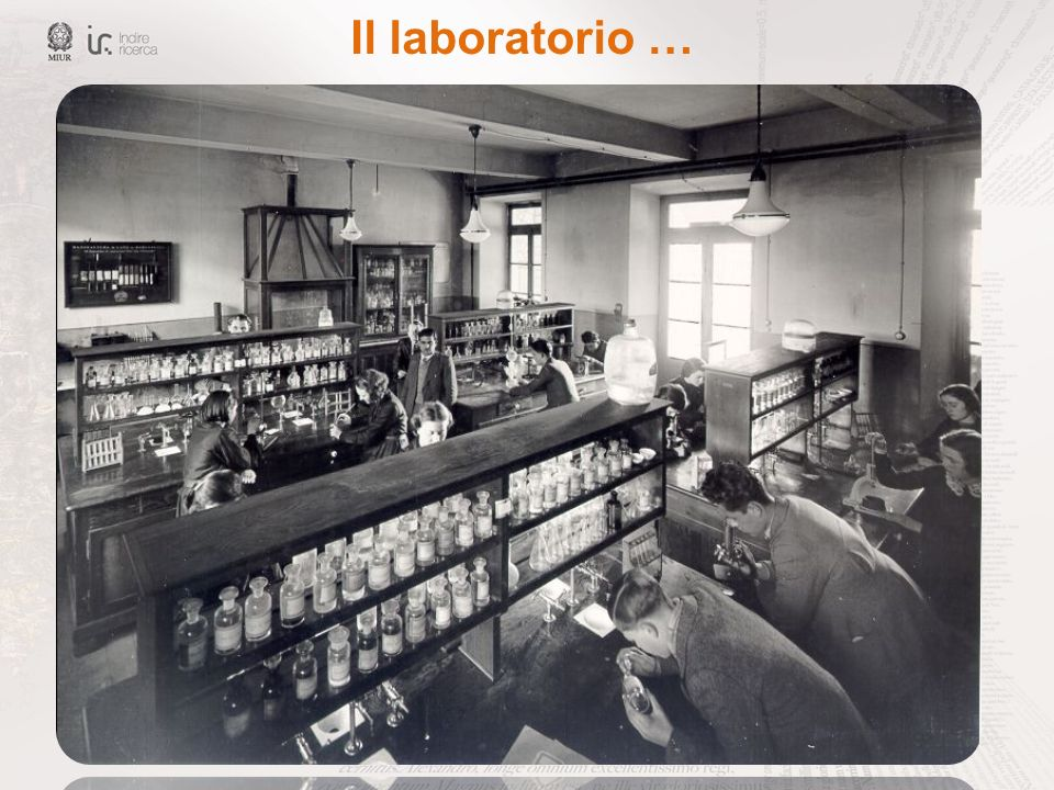 Il laboratorio …