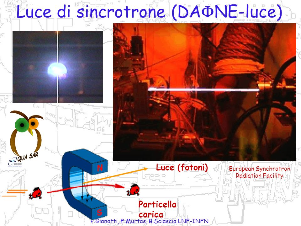 Luce di sincrotrone (DANE-luce)