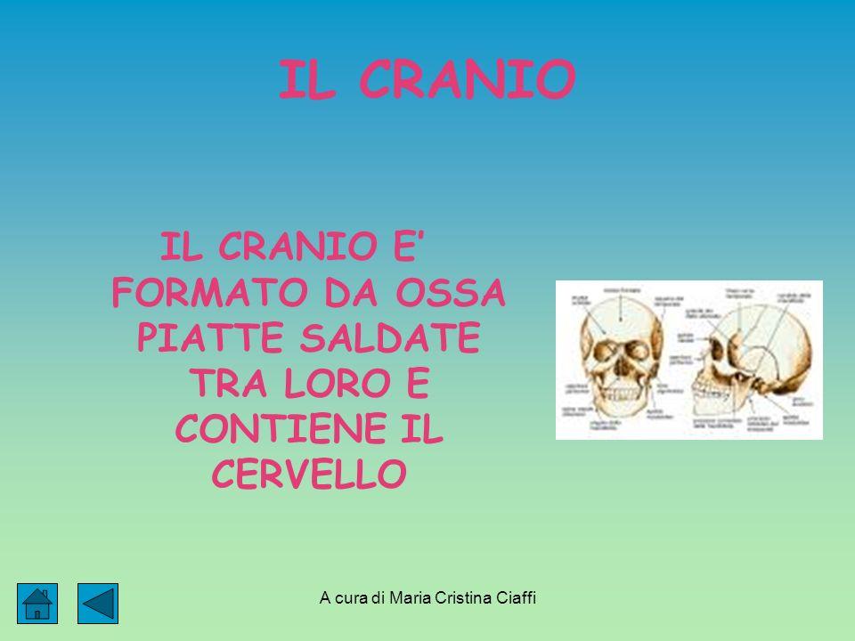 A cura di Maria Cristina Ciaffi