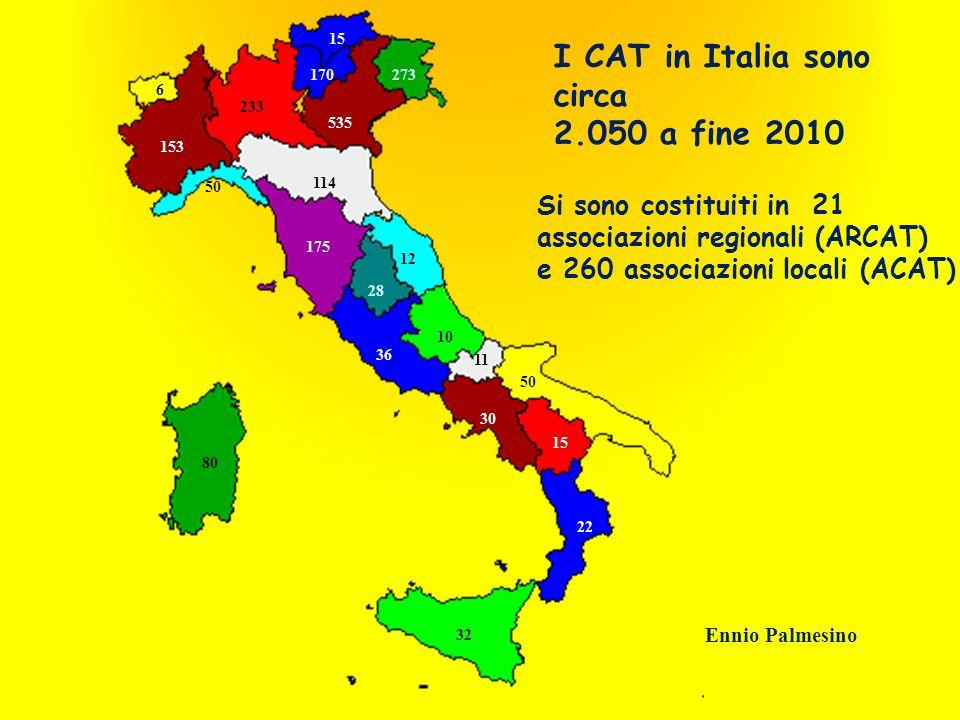 I CAT in Italia sono circa 2.050 a fine 2010