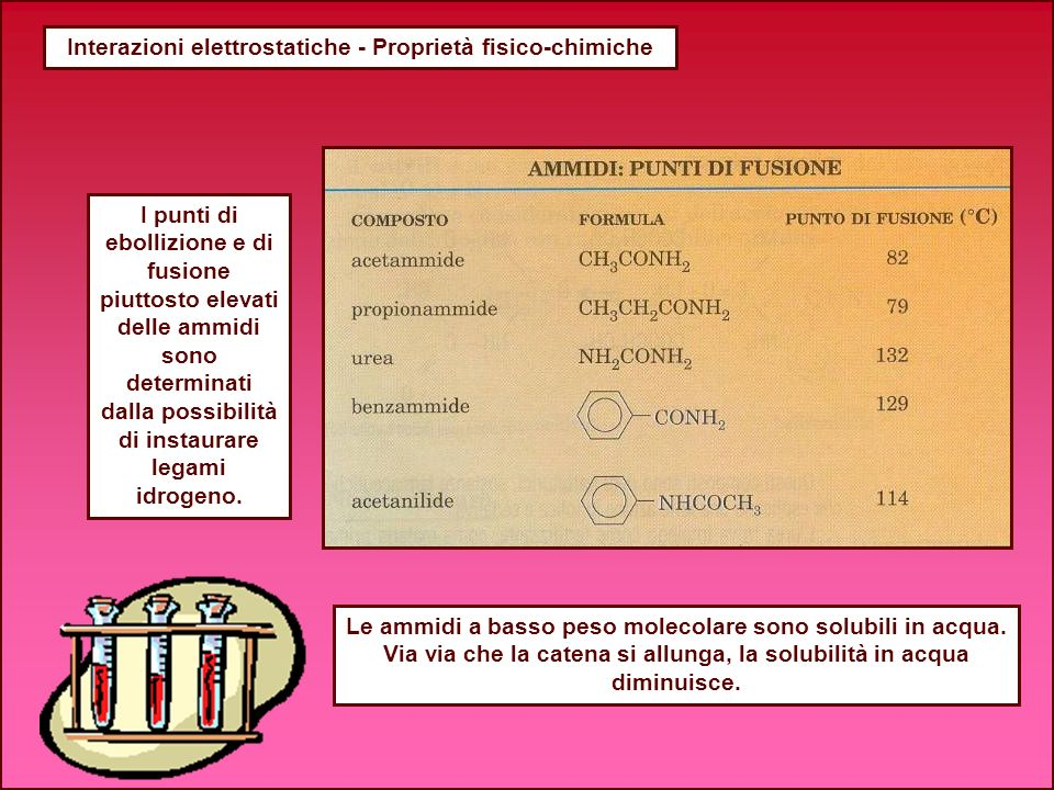 Interazioni elettrostatiche - Proprietà fisico-chimiche