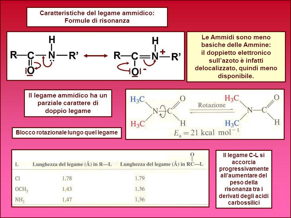 Caratteristiche del legame ammidico: Formule di risonanza