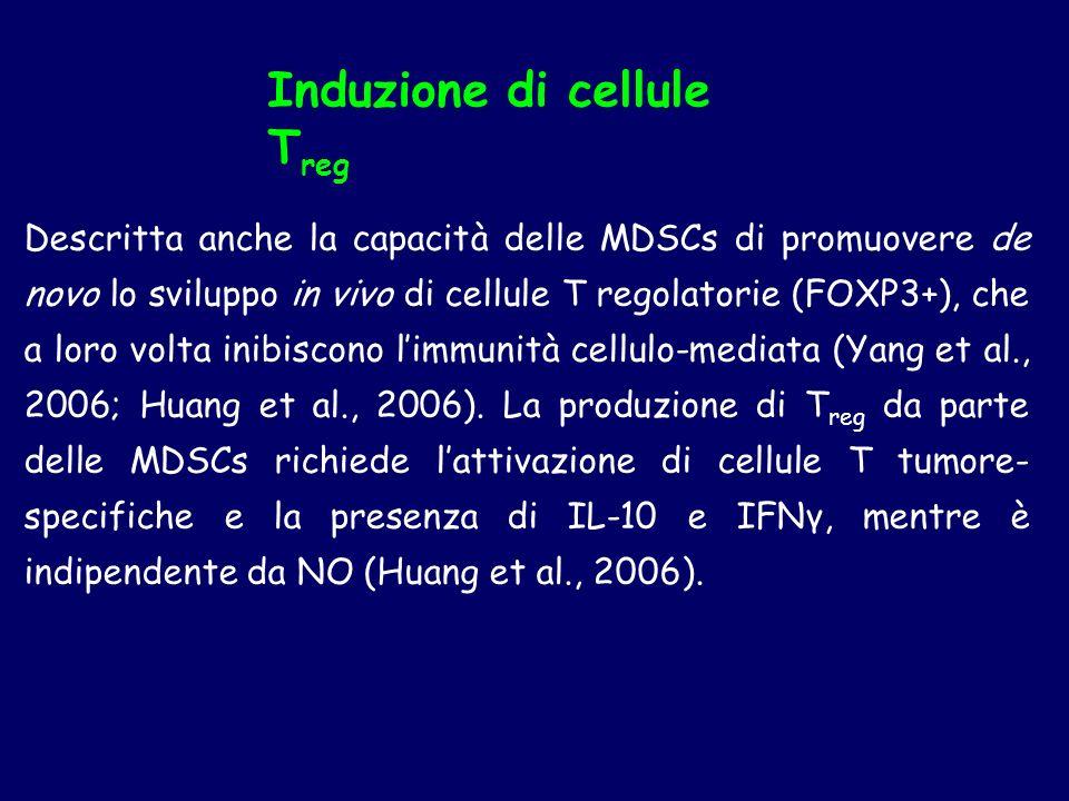 Induzione di cellule Treg