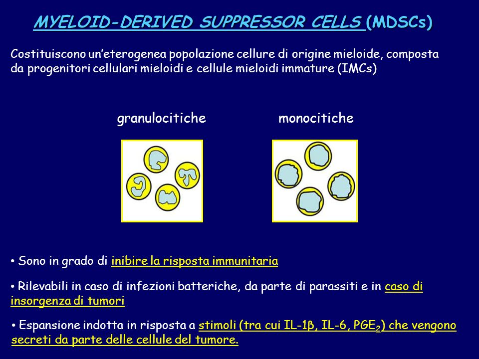 MYELOID-DERIVED SUPPRESSOR CELLS (MDSCs)