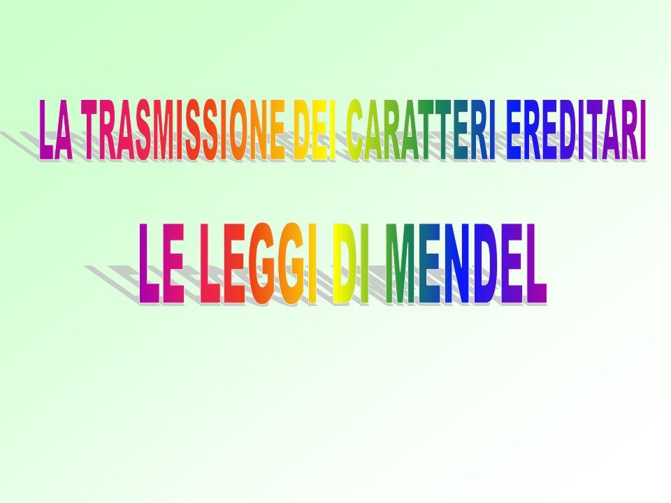 LA TRASMISSIONE DEI CARATTERI EREDITARI