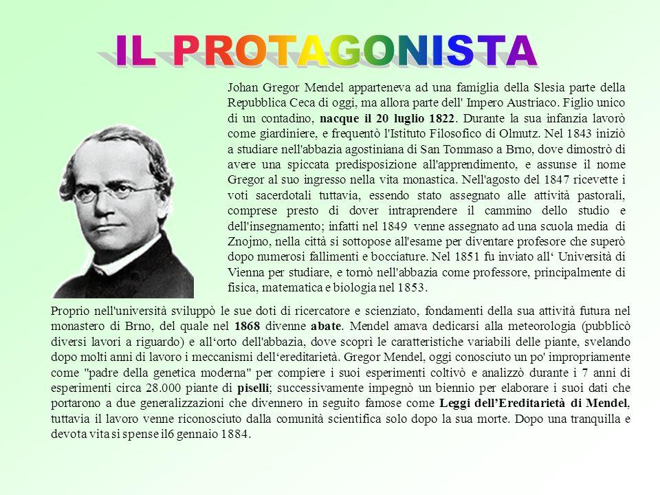 IL PROTAGONISTA