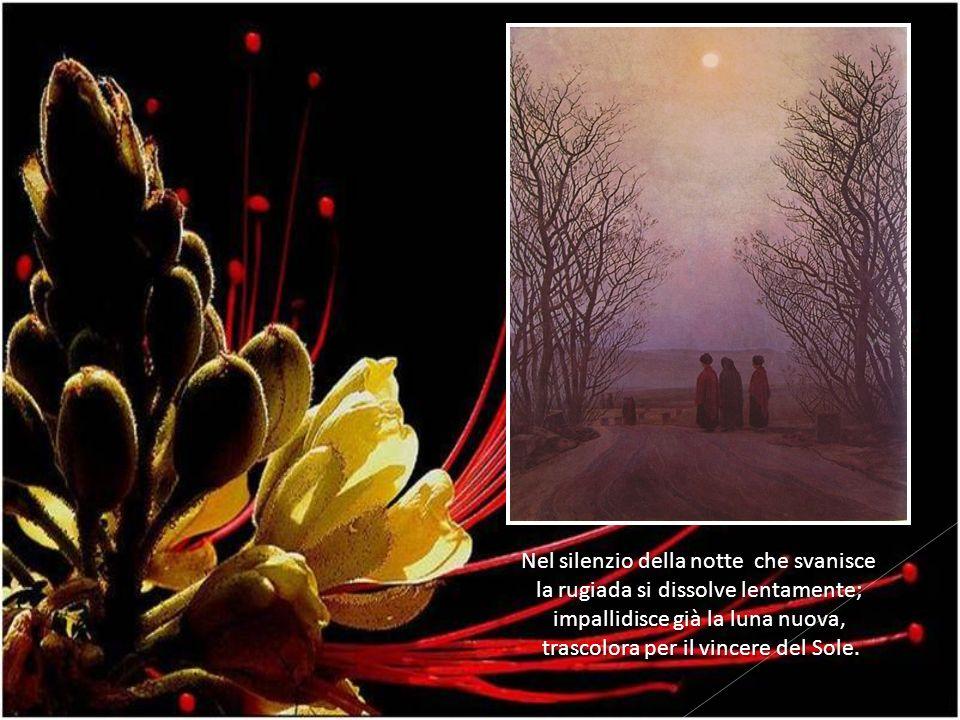 Nel silenzio della notte che svanisce la rugiada si dissolve lentamente; impallidisce già la luna nuova, trascolora per il vincere del Sole.
