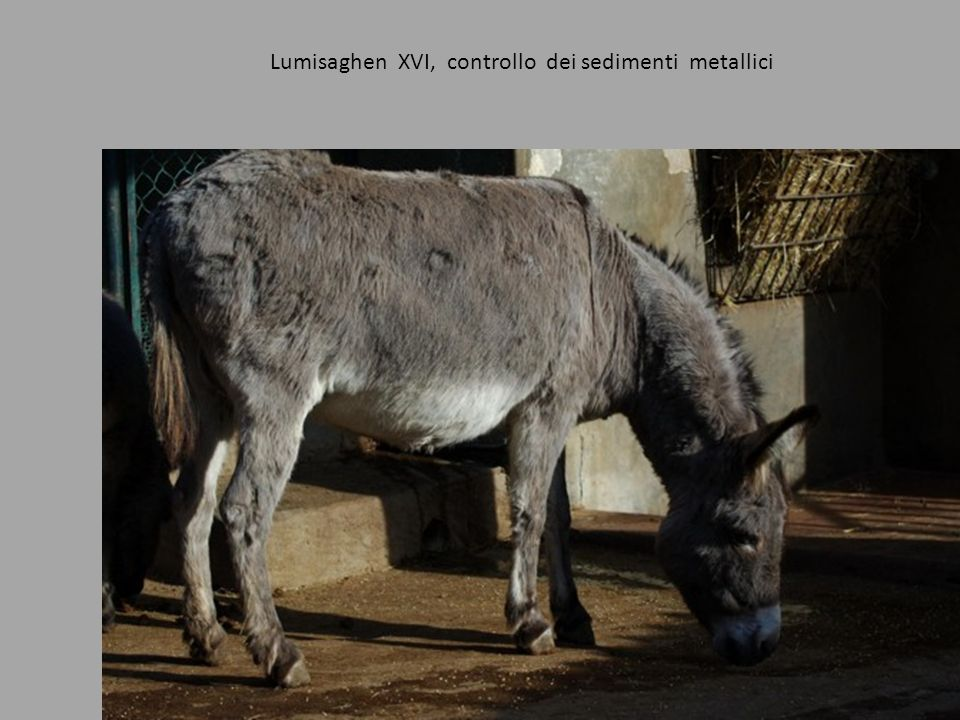 Lumisaghen XVI, controllo dei sedimenti metallici