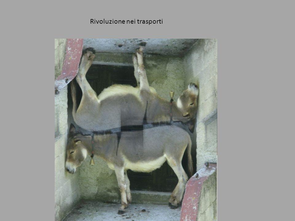 Rivoluzione nei trasporti