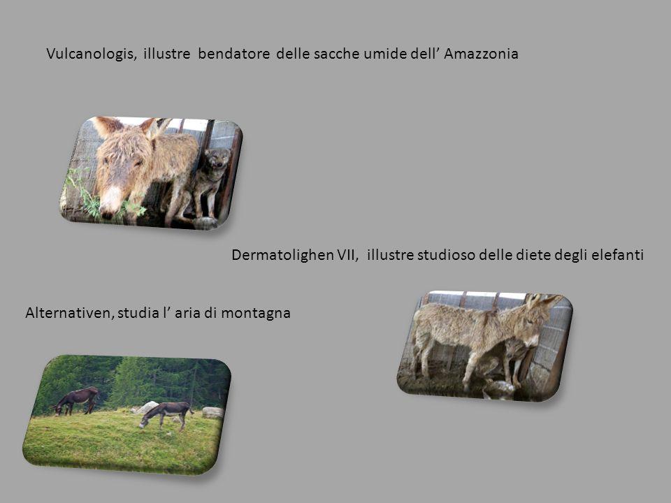 Vulcanologis, illustre bendatore delle sacche umide dell' Amazzonia