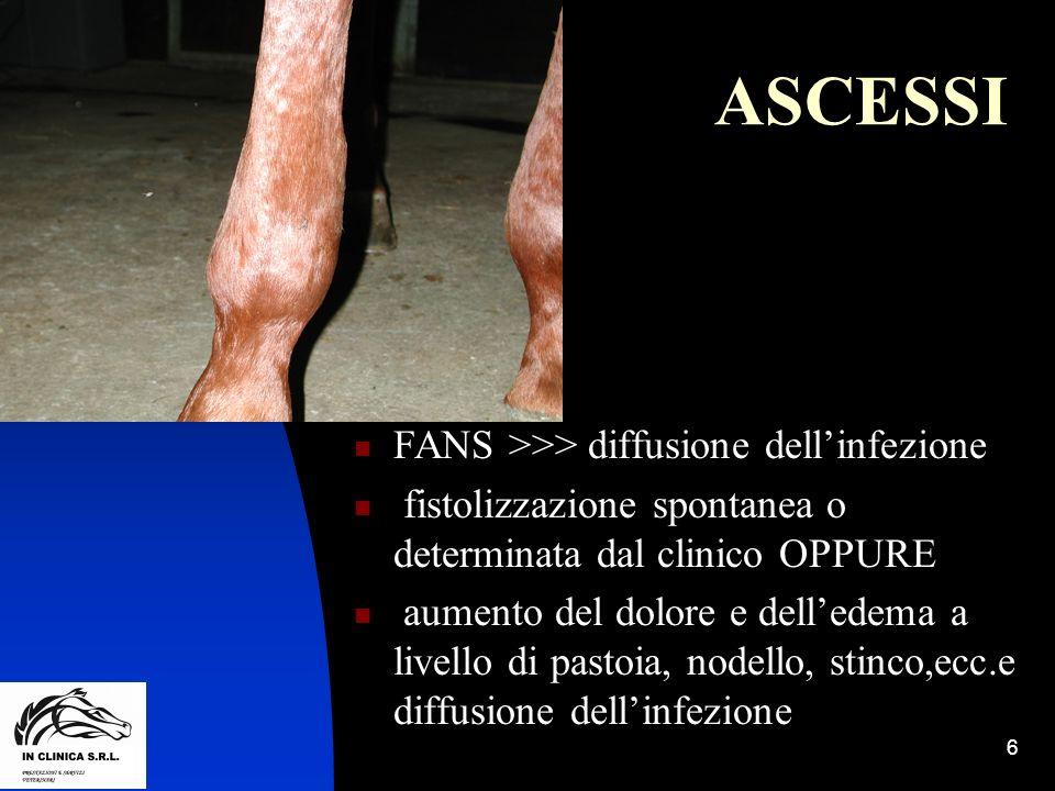 ASCESSI FANS >>> diffusione dell'infezione