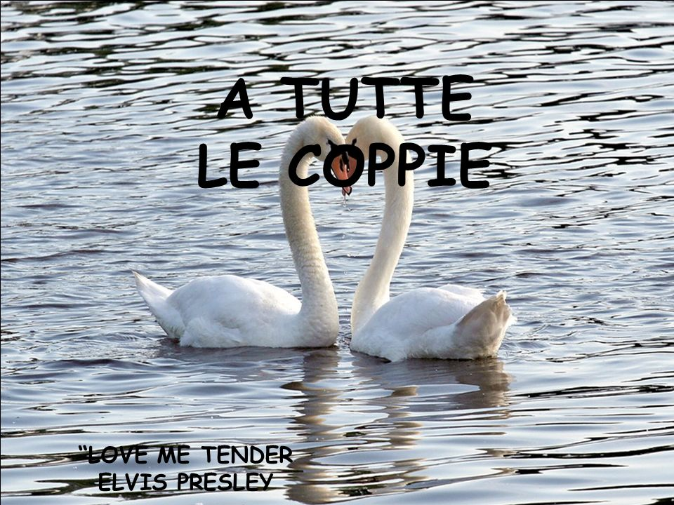 A TUTTE LE COPPIE LOVE ME TENDER ELVIS PRESLEY