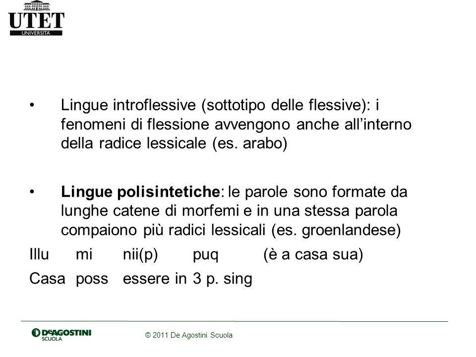 Lingue introflessive (sottotipo delle flessive): i fenomeni di flessione avvengono anche all'interno della radice lessicale (es. arabo)