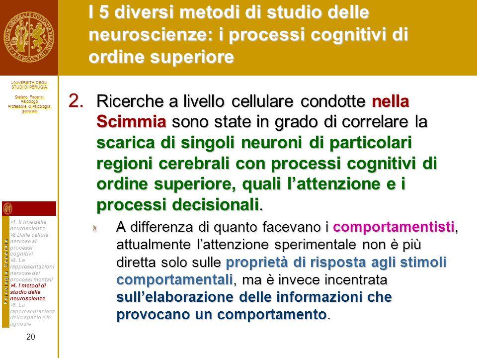 I 5 diversi metodi di studio delle neuroscienze: i processi cognitivi di ordine superiore