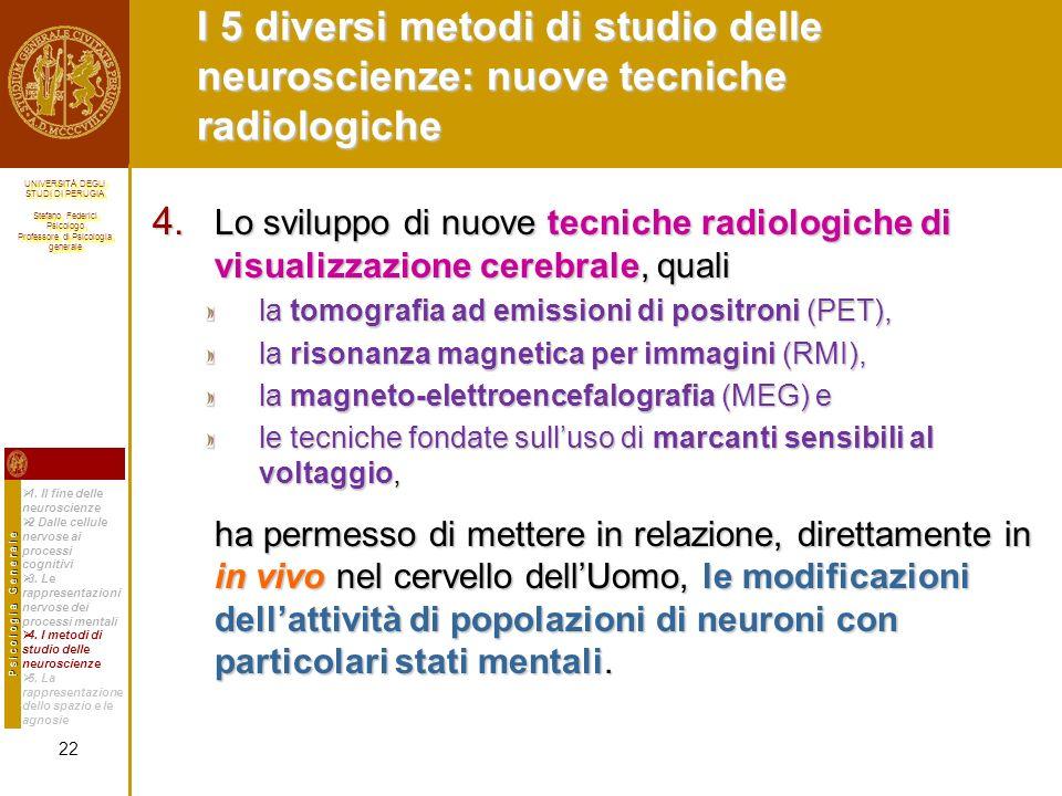 I 5 diversi metodi di studio delle neuroscienze: nuove tecniche radiologiche