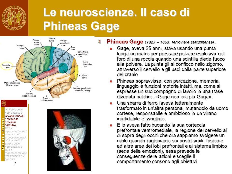 Le neuroscienze. Il caso di Phineas Gage