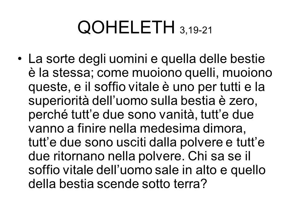 QOHELETH 3,19-21