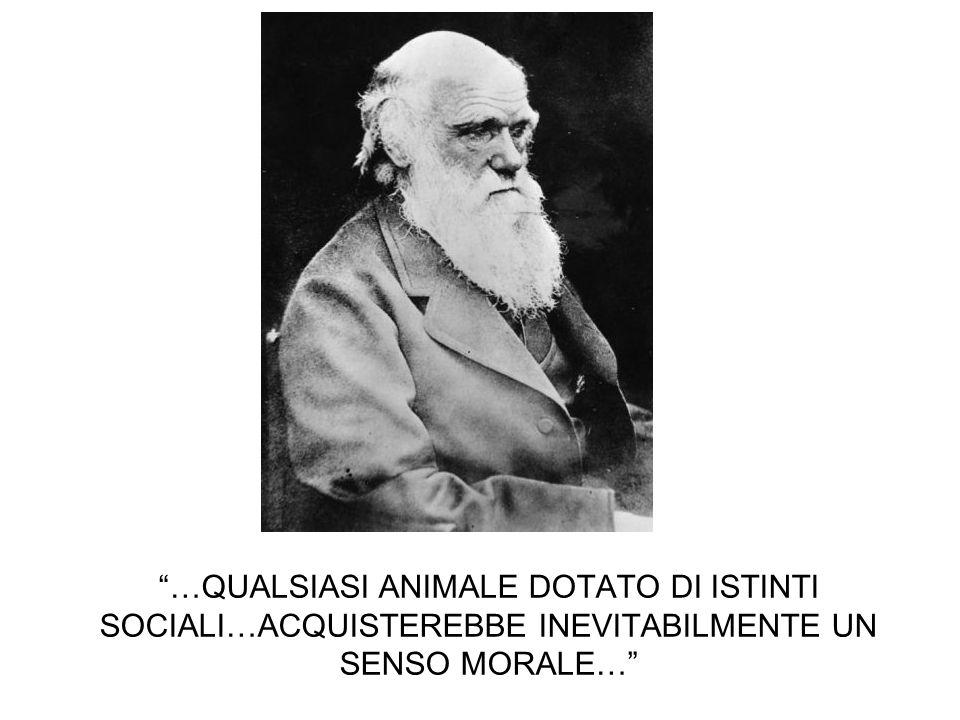 …QUALSIASI ANIMALE DOTATO DI ISTINTI SOCIALI…ACQUISTEREBBE INEVITABILMENTE UN SENSO MORALE…