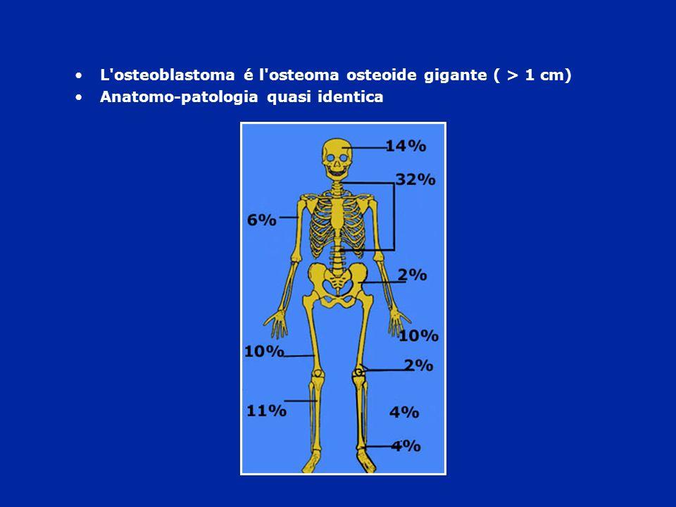 L osteoblastoma é l osteoma osteoide gigante ( > 1 cm)