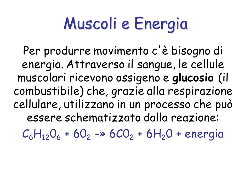 Muscoli e Energia