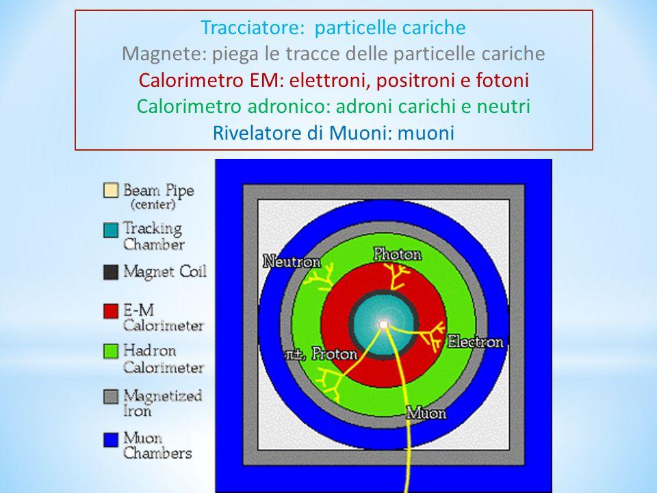 Tracciatore: particelle cariche