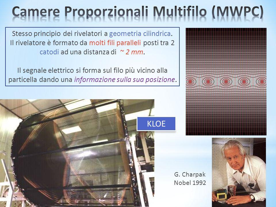 Camere Proporzionali Multifilo (MWPC)