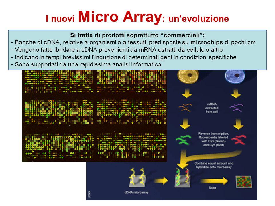 I nuovi Micro Array: un'evoluzione