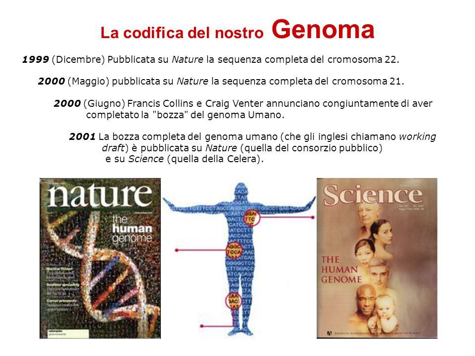 La codifica del nostro Genoma