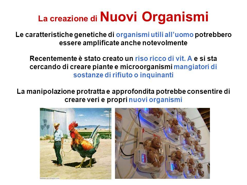 La creazione di Nuovi Organismi