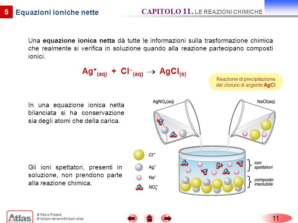 Equazioni ioniche nette