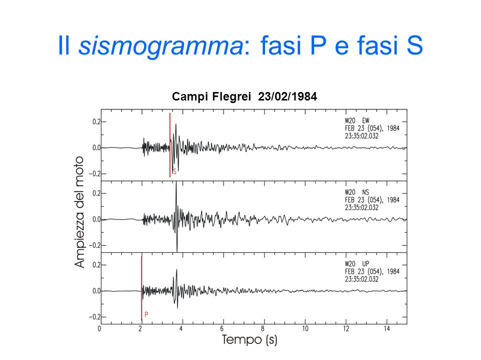 Il sismogramma: fasi P e fasi S