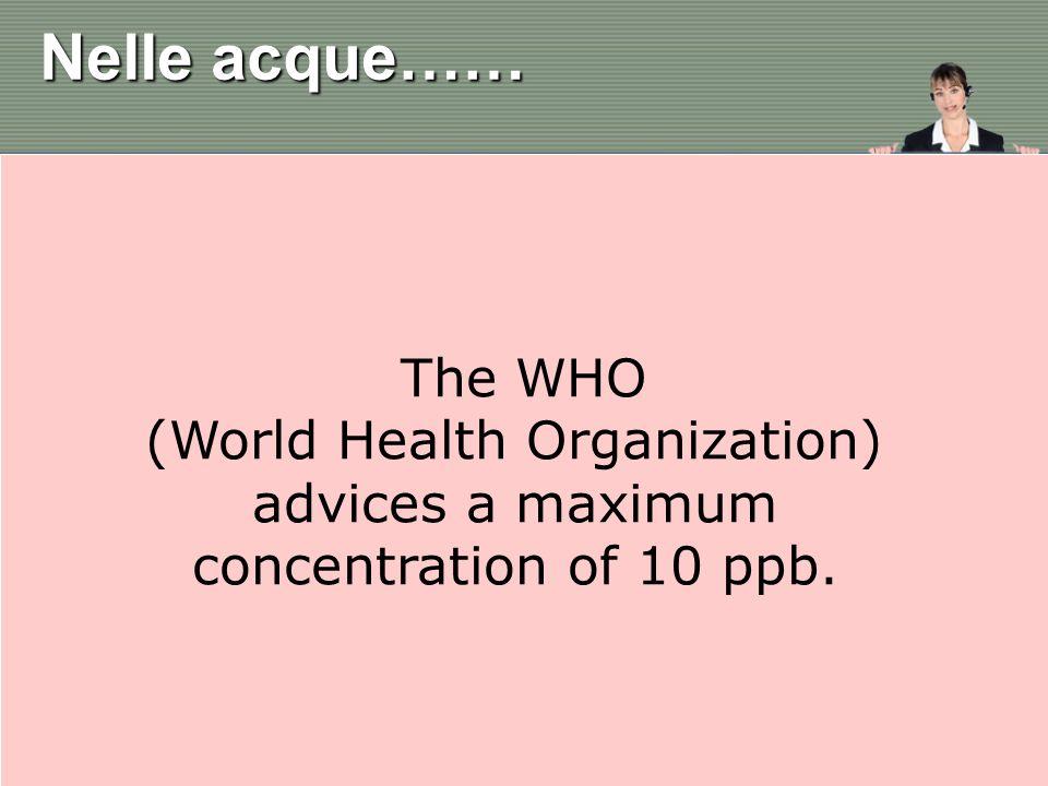 (World Health Organization)