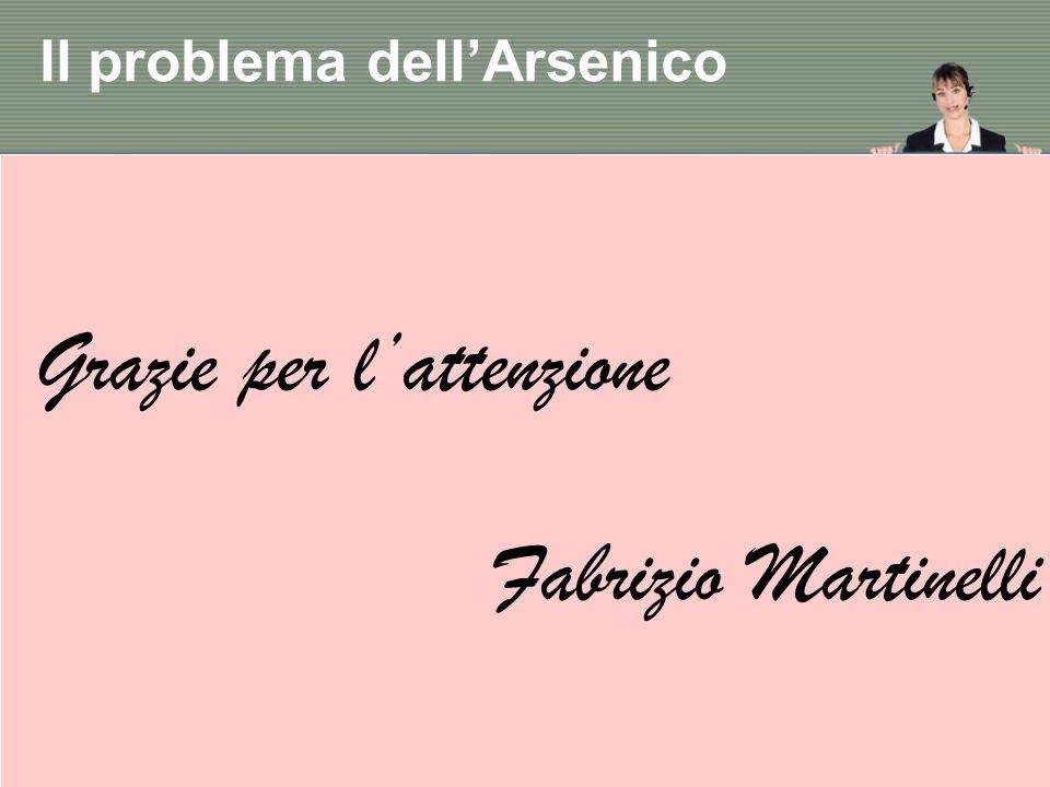 Il problema dell'Arsenico