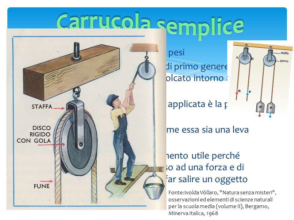 Carrucola semplice La carrucola serve per sollevare pesi