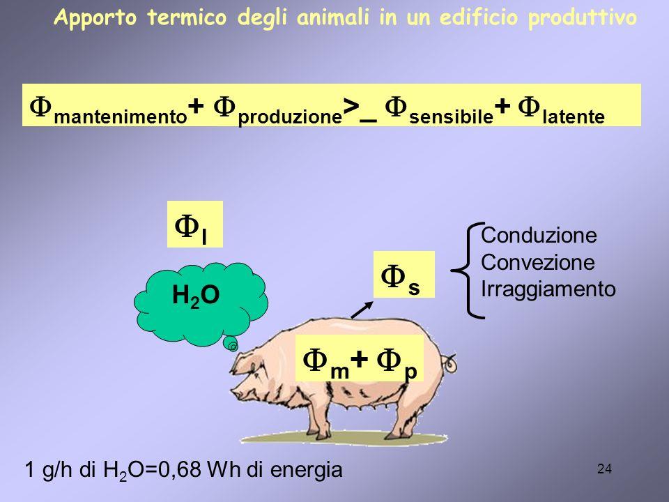 l s m+ p mantenimento+ produzione>_ sensibile+ latente H2O